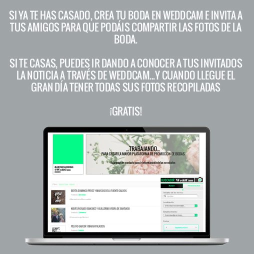 weddcam_03