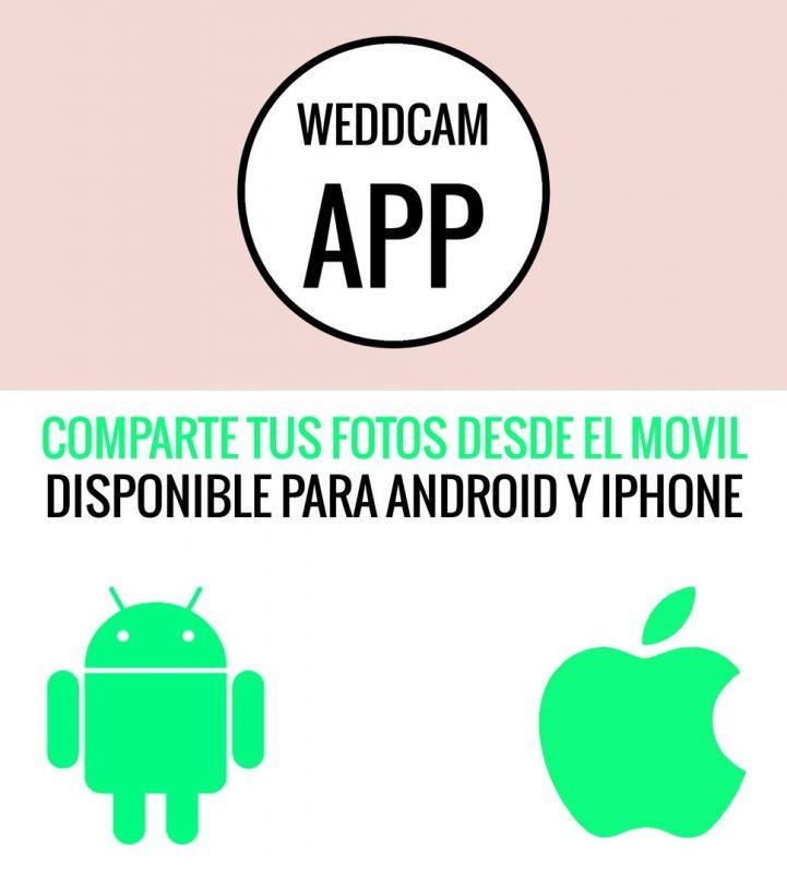 weddcam_04